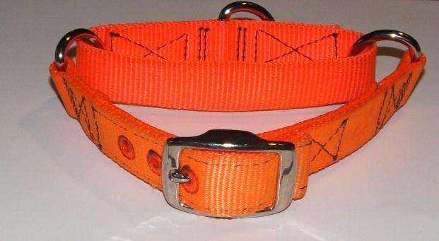 1 Inch Slip Proof Training Collar