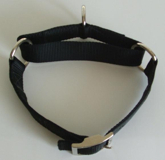 1-1/2 Inch Slip Proof Training Collar