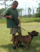 Hog Hobbles - Hunting Dog Supplies