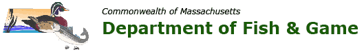 Massachusetts Fishing and Hunting Licenses