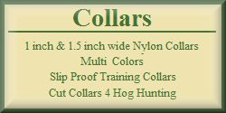 Nylon Dog Collars - Slip Proof Training Collars