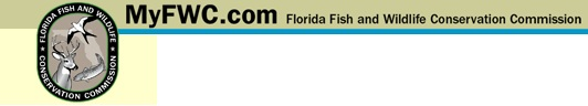 Florida Fishing and Hunting Licenses