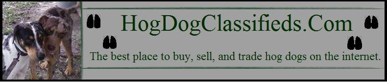 Hog Dog Classifieds - Buy & Sell Hog Dogs