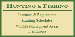 Hunting Licences in All 50 States