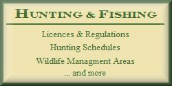 Hunting Licences
