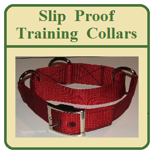 Slip Proof Training Collars 1 Inch and 1.5 Inch