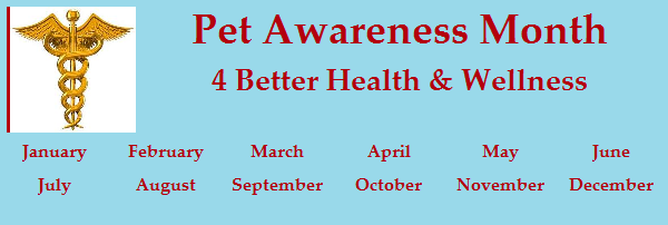Pet Awareness Month